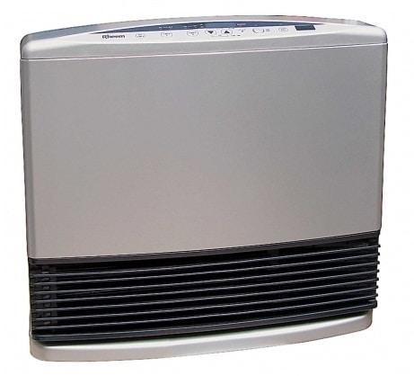rheem gas heater